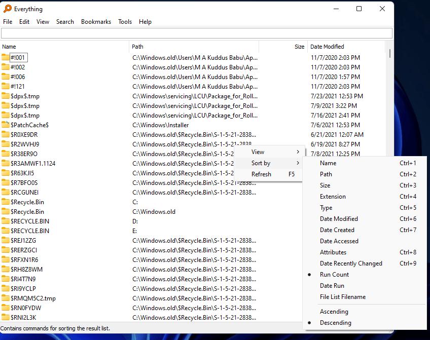 Everything Screenshot